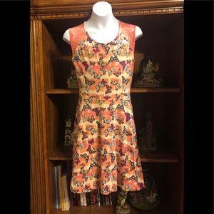 Girls size 14 Mudd butterfly dress